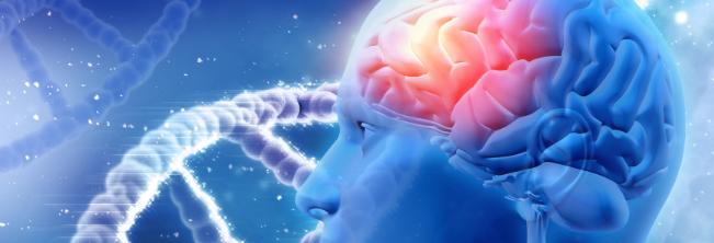 Co może zrobić sztuczna inteligencja dla osoby z niepełnosprawnością?